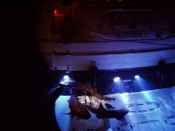 3x bronze led underwater boat light dock lamp fish for Fishing lights for boats